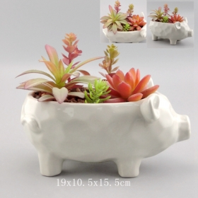 Ceramic pig planter manufacturer