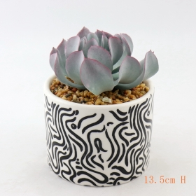 Cheap Oval Ceramic Planter Traders